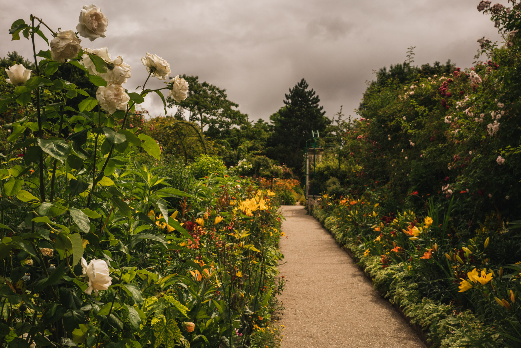 Monet\'s Garden | Ann Street Studio