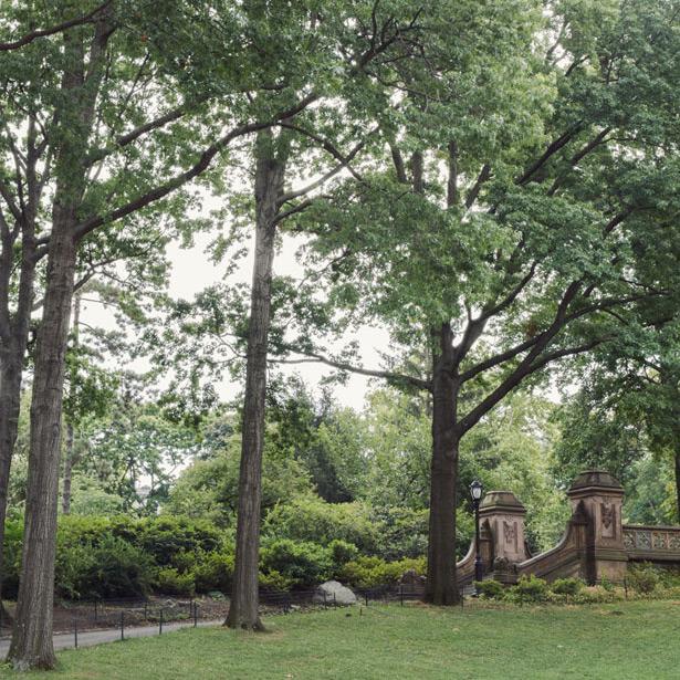 Central Park (16)