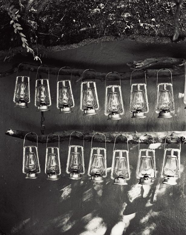 Safari Londolzi (3)