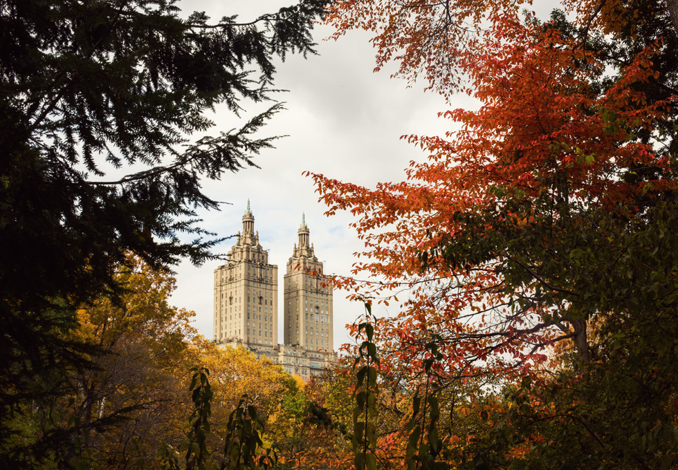 Manhattan's Central Park in the fall