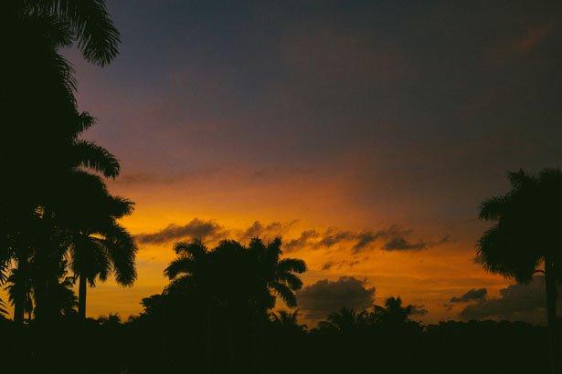 Miami_34