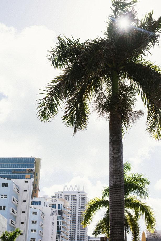 Miami_26