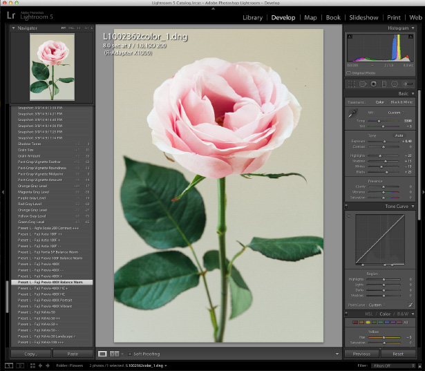 how to change white balance in photoshop raw