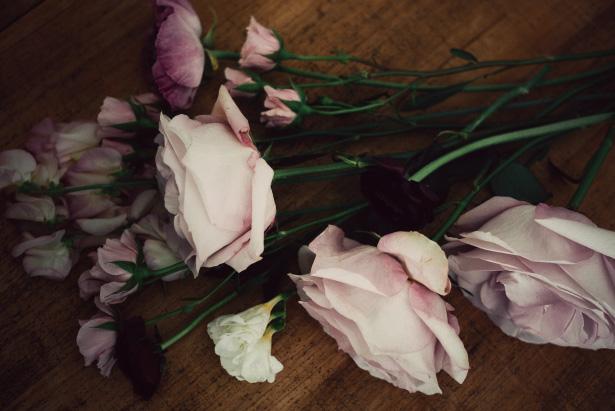 Flowers by Jamie Beck