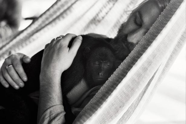 Monkey_Love_003