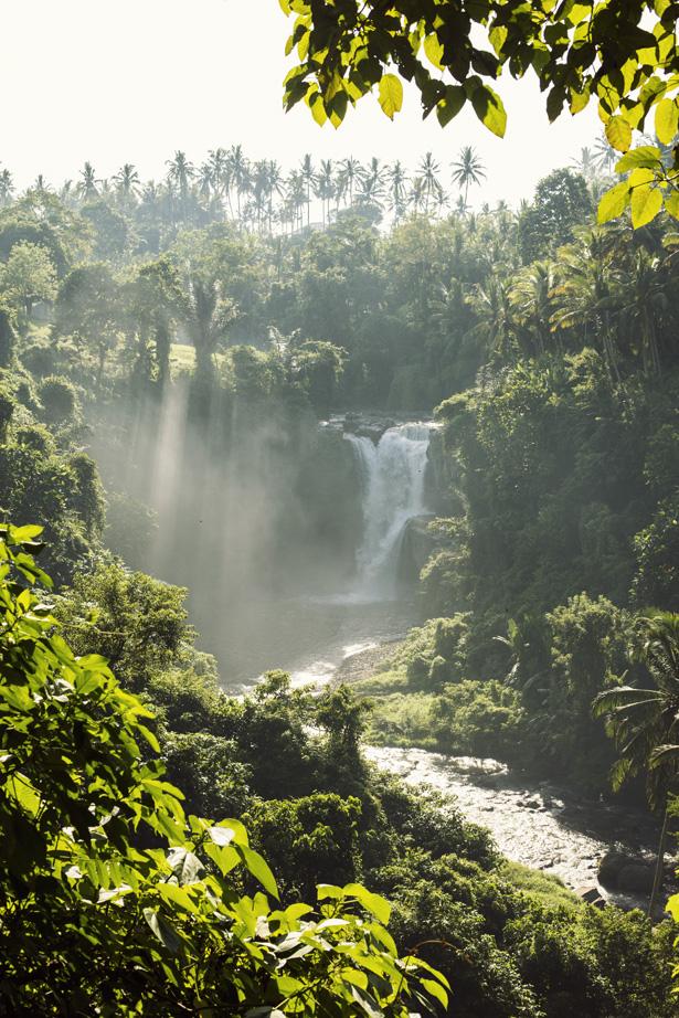 Cuyana_Bali_Nature_015