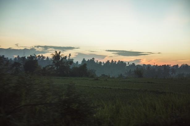 Cuyana_Bali_Nature_031