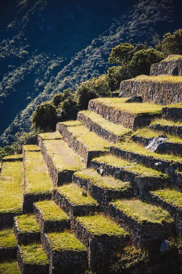Machu_Picchu__10