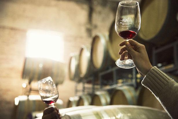 Algodon_Wine_Estate_04
