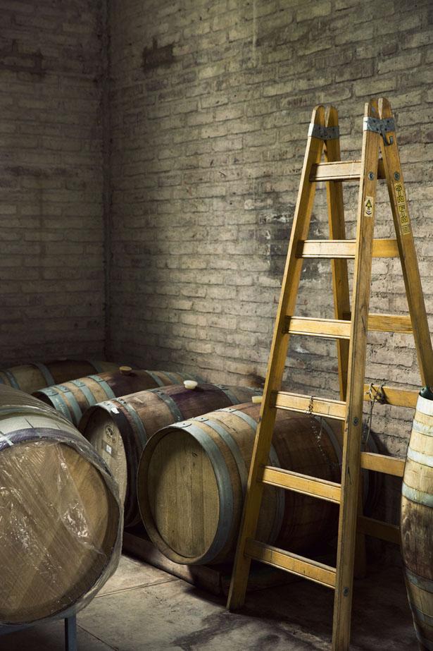 Algodon_Wine_Estate_19