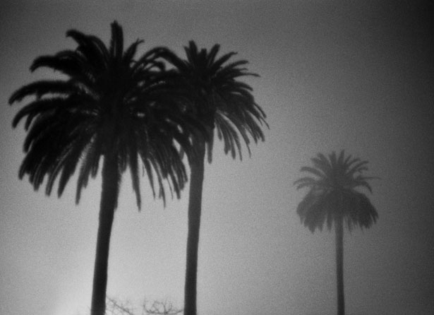 Los_Angeles_2016_18