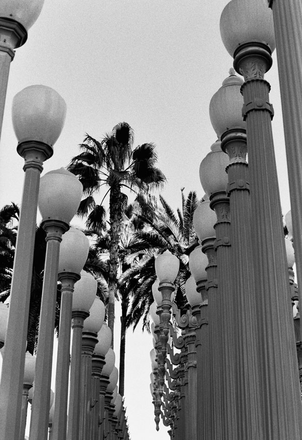 Los_Angeles_2016_21