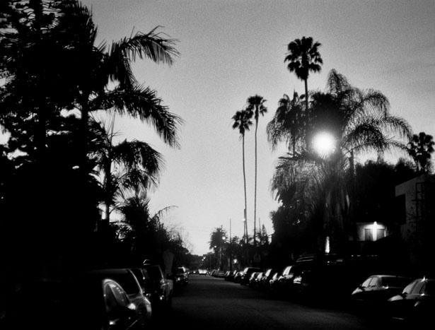 Los_Angeles_2016_39