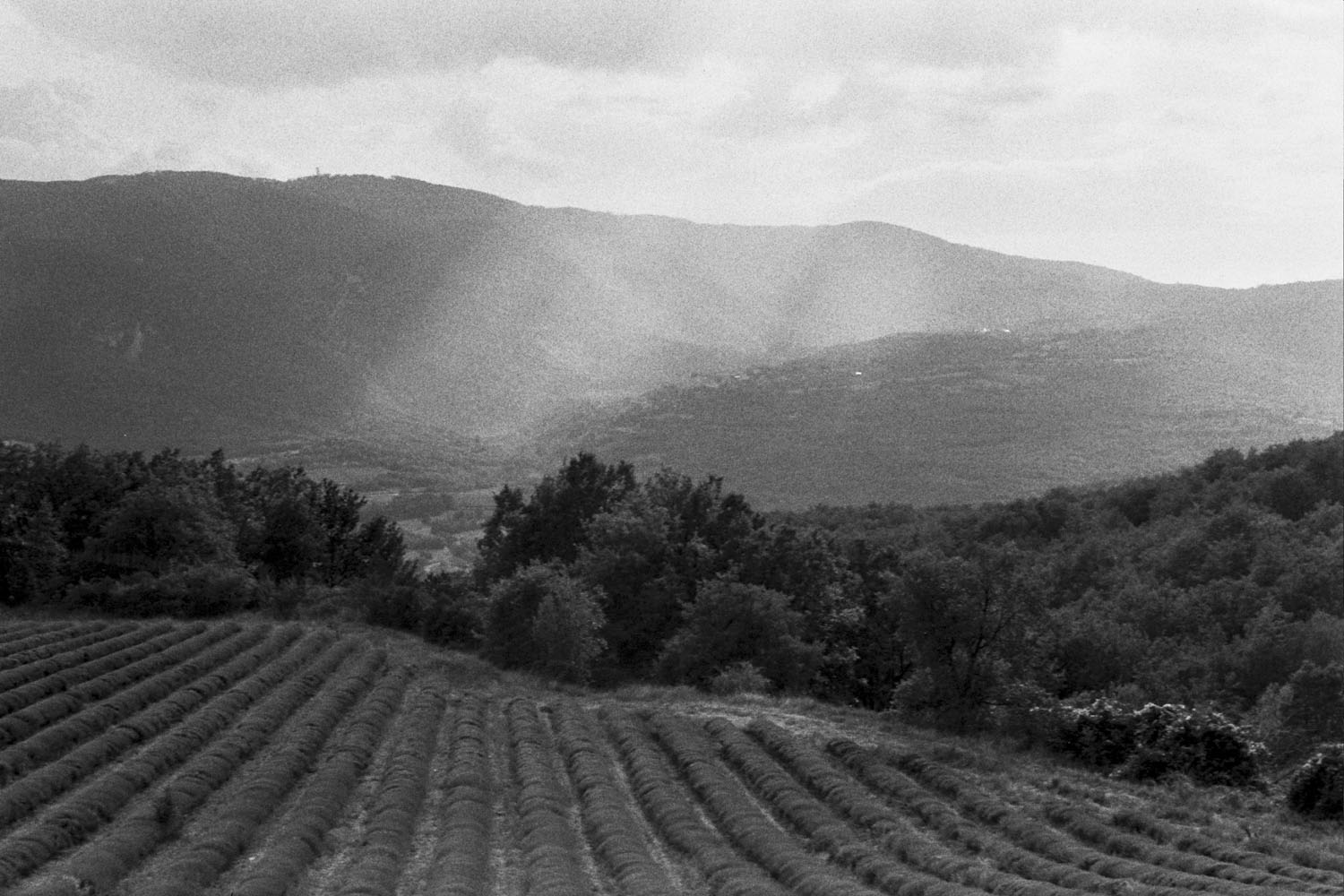 Autumn_In_Provence_017