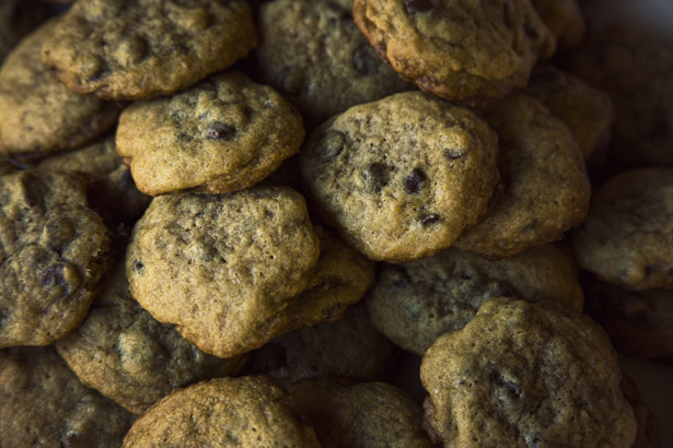 Salt_Box_Cookies_07